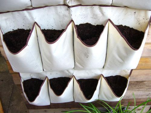 trồng rau sạch trên sân thượng nhà phố bằng túi vải