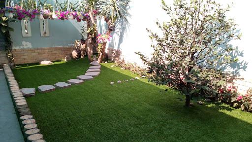 cỏ nhân tạo đẹp